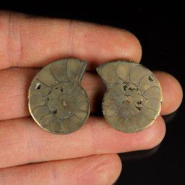 AMONIT Z PIRYTEM- 28 mm - KREDA DOLNA - 110 mln lat - DWIE POŁÓWKI - MADAGASKAR